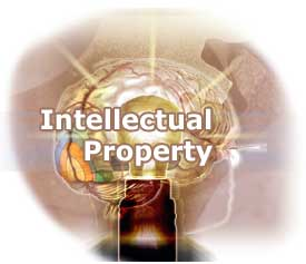 Intellectualproperty27